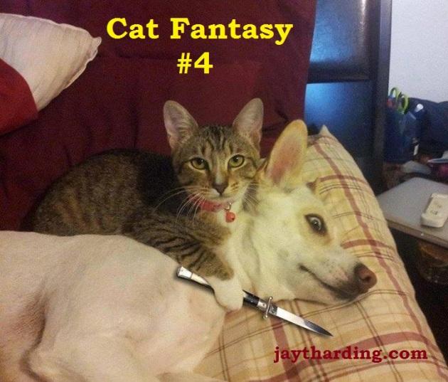 What My Cat Dreams