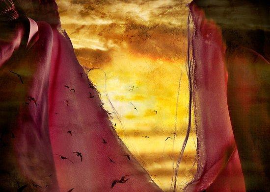 rending of the veil by rachel davison