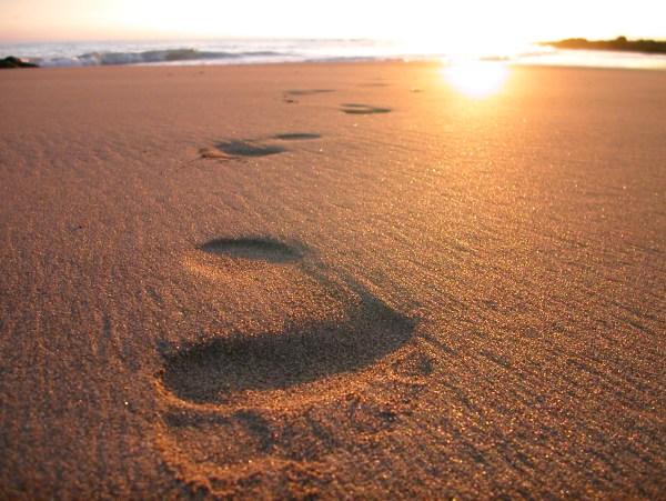 desert walking