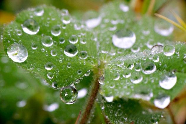 winter-rain
